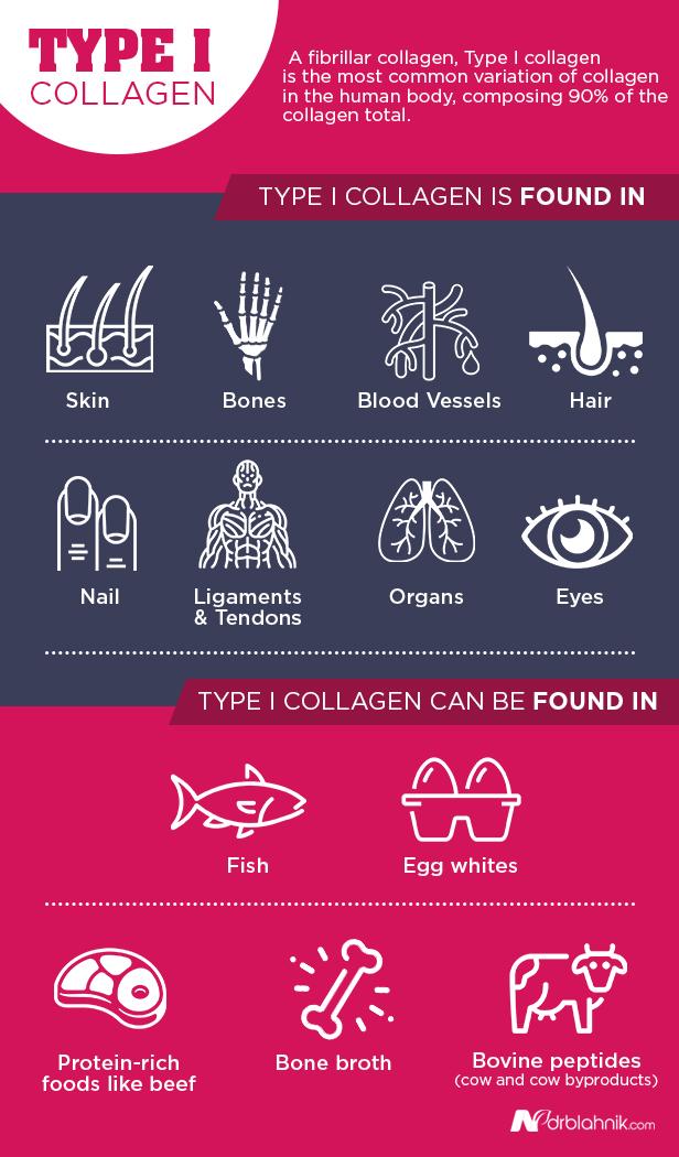 Type I Collagen